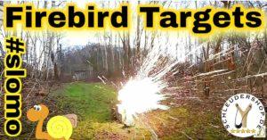 Firebird Reactive Targets Zeitlupe
